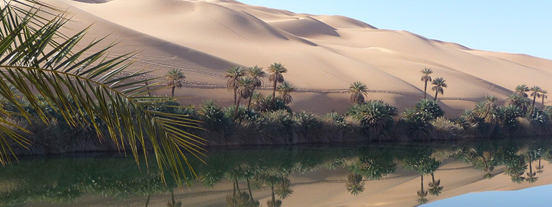 Libyen Oase