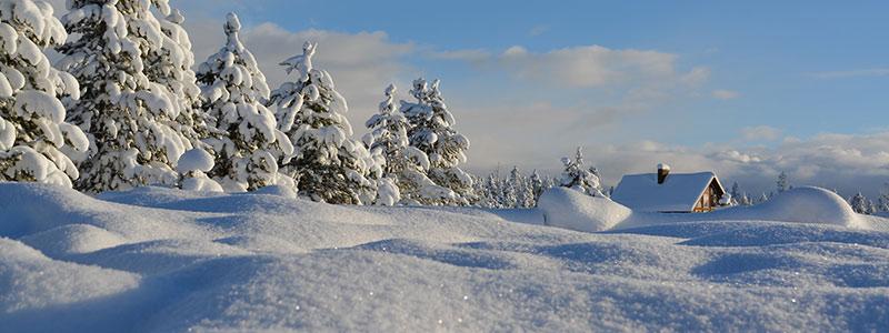 Winter Schneelandschaft
